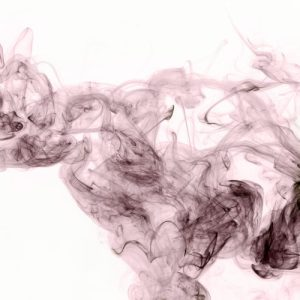 Taurus grey smoke